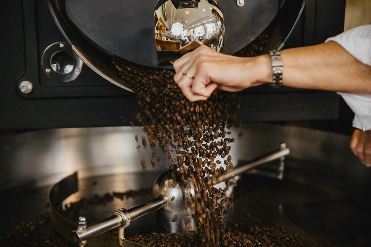 Der geröstete Kaffee fällt aus dem Röster in das Kühlsieb.