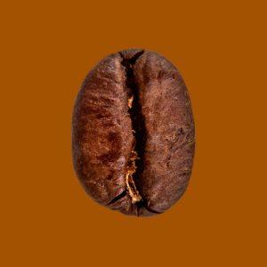 Nahaufnahme Espressobohne Bio Classico