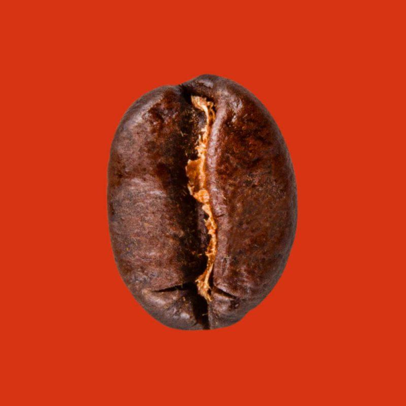 Nahaufnahme Espressobohne Buongustaio