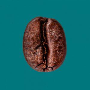 Nahaufnahme Espressobohne entkoffeiniert