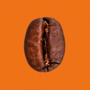 Nahaufnahme Espressobohne Ethiopia Puro