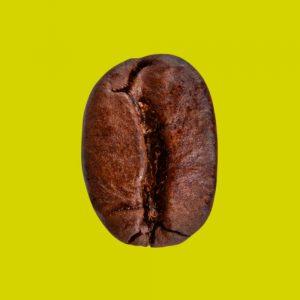 Nahaufnahme Espressobohne Premium