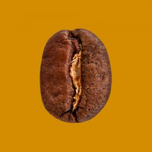 Nahaufnahme Kaffeebohne Café Decenio