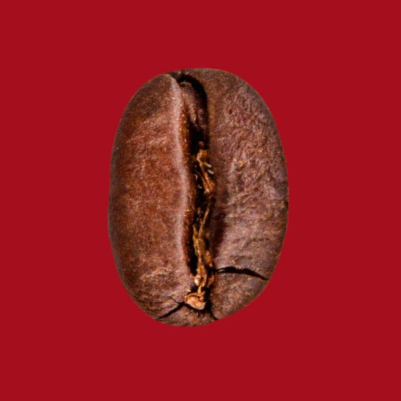 Nahaufnahme Kaffeebohne koffè Mozart