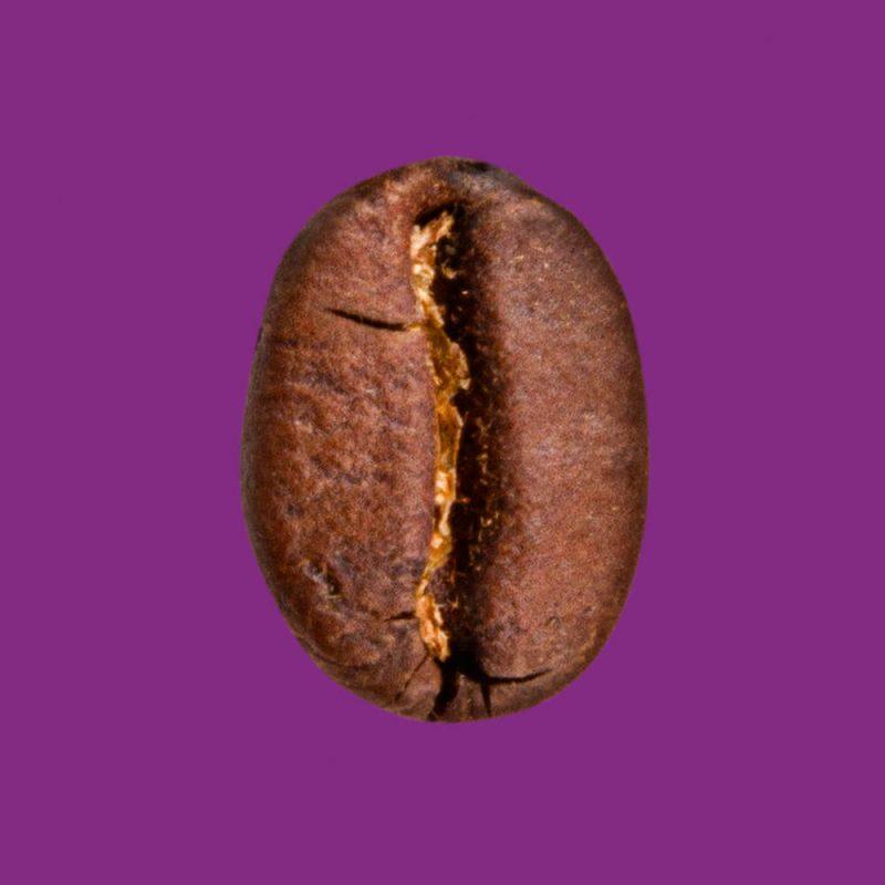 Nahaufnahme Kaffeebohne Peru