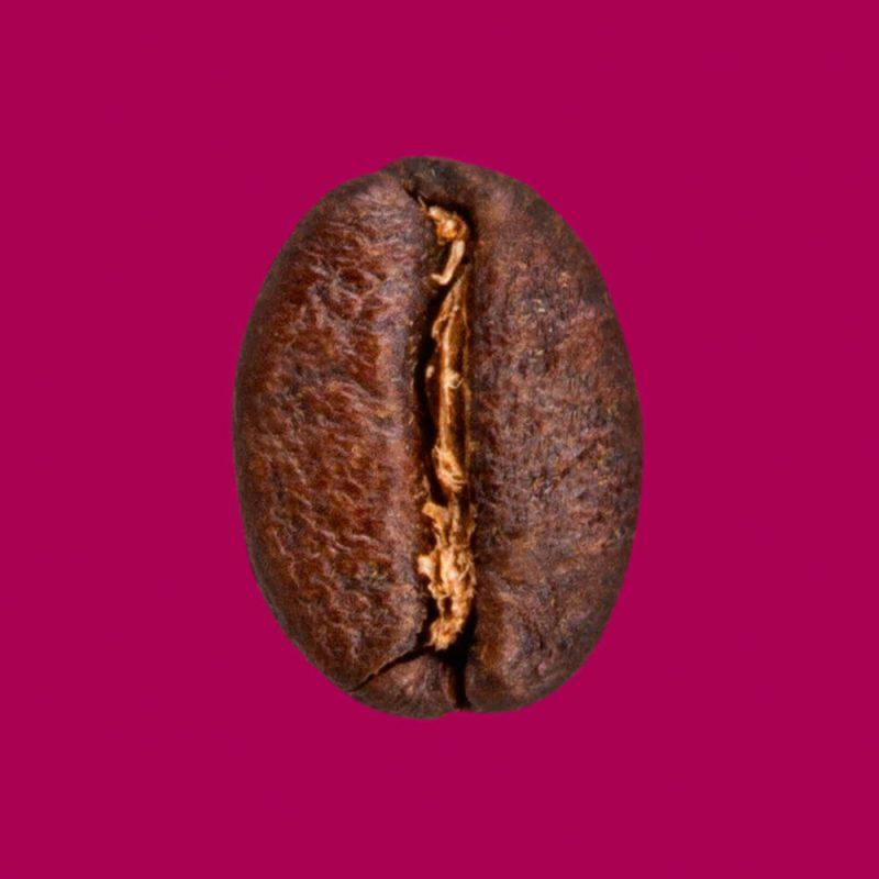 Nahaufnahme Kaffeebohne Wiener Melange