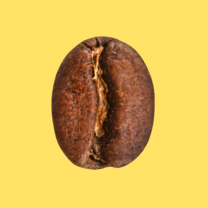 Nahaufnahme Kaffeebohne Würzburger Melange